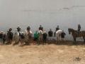 excursion-a-caballo-telde-gran-canaria-fiesta-lomo-magullo-36.jpg
